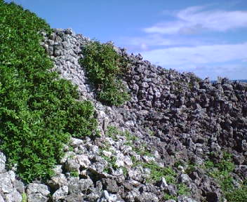 野面の城壁