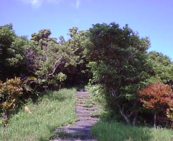 グスク内の道