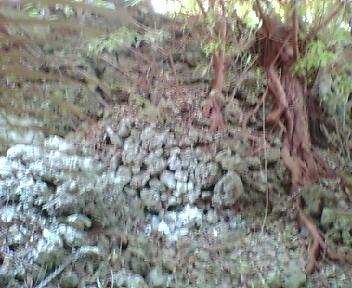 古墓付近の石積み