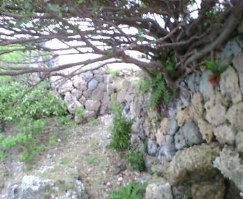 海岸沿いの石積み