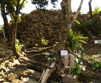 大庭の南部「南殿跡」にある空御カー(カラウカー)。