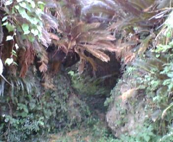 岩を利用したグスク入り口