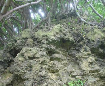 拝所の上に見える巨岩