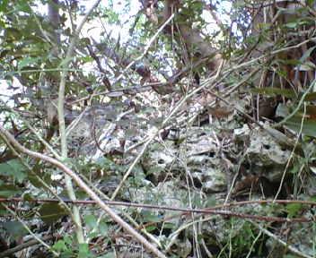 崖に沿って築かれた城壁
