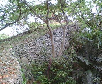見事な城壁