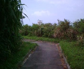 グスク域にある道。