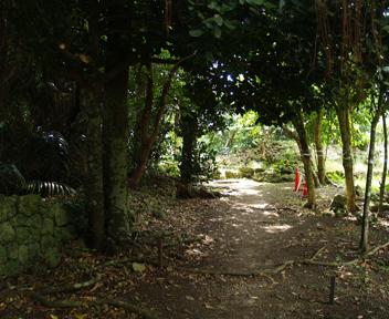 遥拝所への道