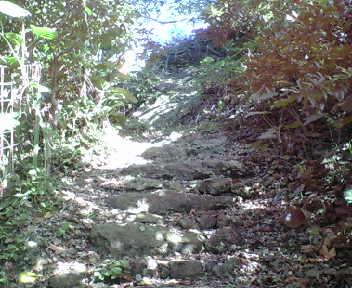 坂中桶川から奥に進んだところにある古い石段。
