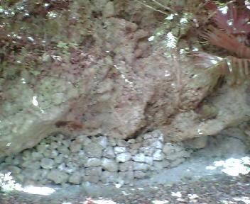道の脇にある古墓