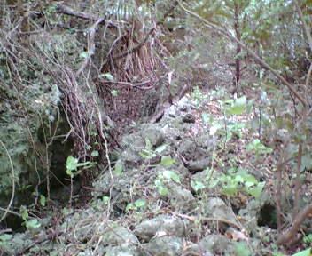 グスクの一角にある石積み