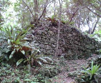 林の中に現れる城壁