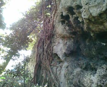 聳え立つ巨岩