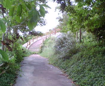公園として整備されたグスク