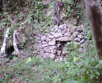 崖下の古墓