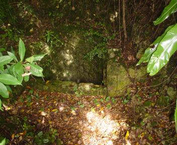 森の入り口で石段を降りた場所