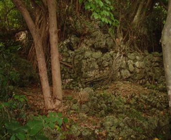 森の奥に進むと見える石積み