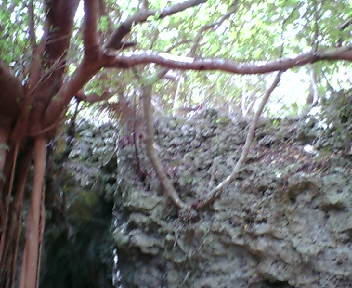 崖の上の石積み