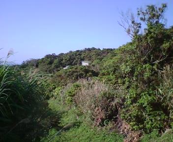 南側から見たグスク遠景