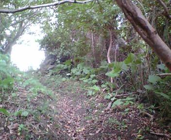 グスク南側の道