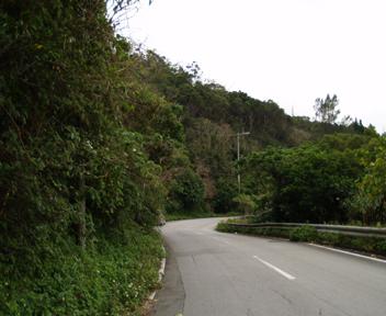グスク脇の道