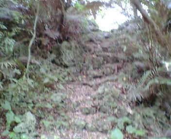 郭内から見た石段