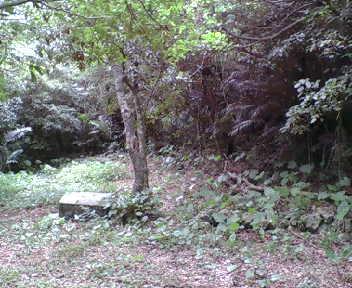 郭には拝所が石段と拝所が見えます