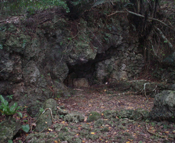 入り口付近の古墓
